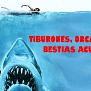 Tiburones, orcas y otras bestias acuáticas