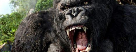 Kong: Skull Island – Nueva (y monstruosa) imagen