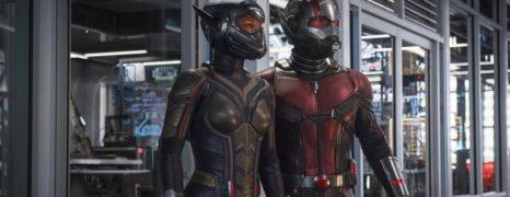 Ant-Man y la Avispa – Tráiler